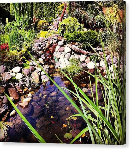 Waterfalls Canvas Print - The Pond In My Parents Backyard. It Is by Mike Warner