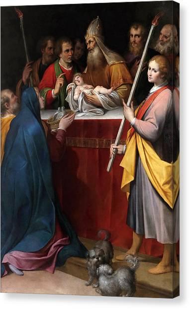 Procaccini Canvas Print - The Presentation In The Temple by Camillo Procaccini