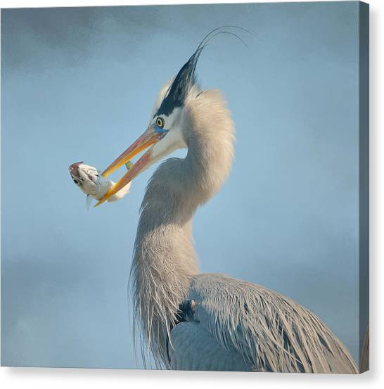 The Prize 3 Canvas Print