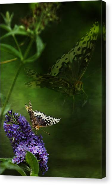 Canvas Print featuring the photograph The Psyche by Belinda Greb