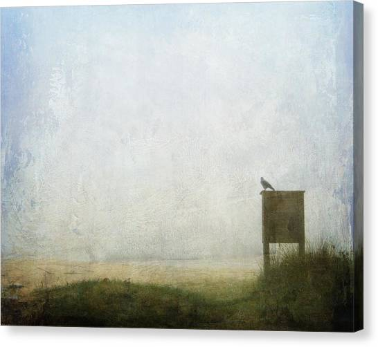 The Raven And The Beach Canvas Print