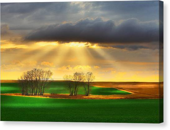 The Ray Of Light Canvas Print