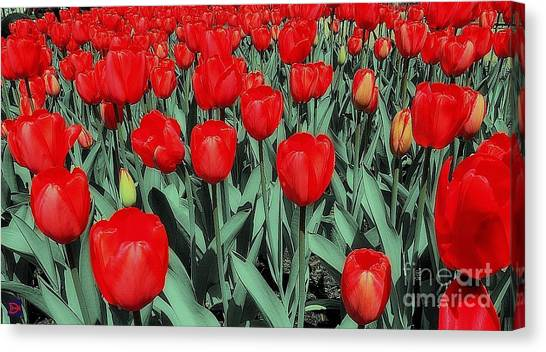 The Red Canvas Print