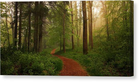 Forest Paths Canvas Print - The Red Path. by Leif L?ndal