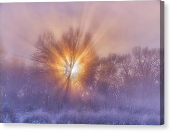 The Rising Canvas Print