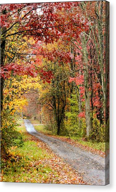 The Road Through Fall Canvas Print
