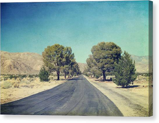 Desert Canvas Print - The Roads We Travel by Laurie Search