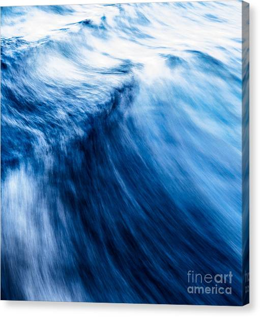 The Roar Of The Sea Canvas Print