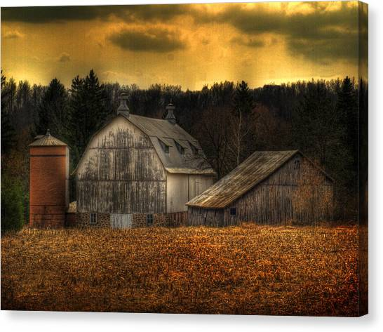 The Rose Farm Canvas Print