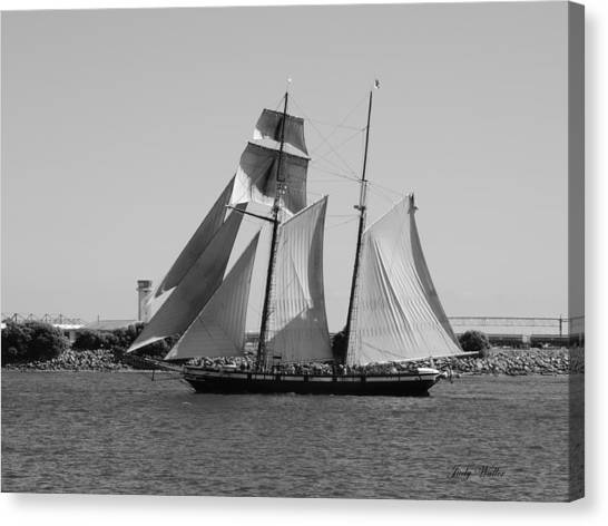 The Sails Canvas Print by Judy  Waller