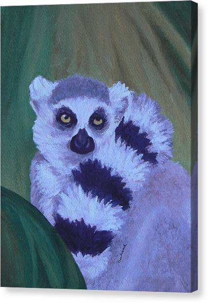 Ring-tailed Lemur Canvas Print - The Scarf by Margaret Saheed