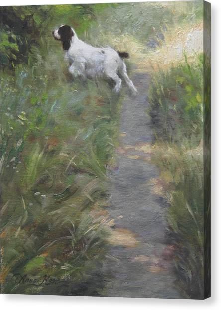 Springer Spaniel Canvas Print - The Scout by Anna Rose Bain