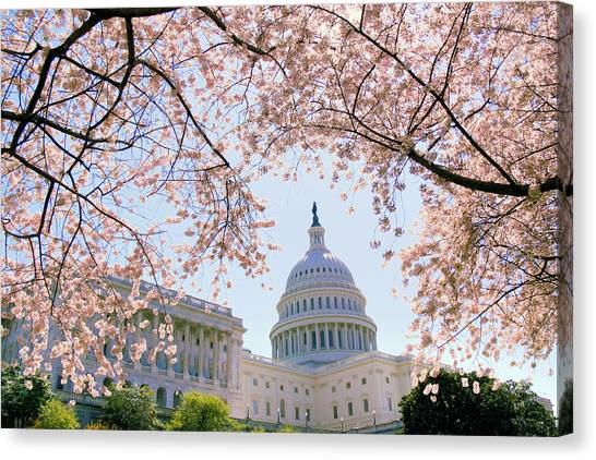 Capitol Building Canvas Print - The Seasonal Experience by Mitch Cat