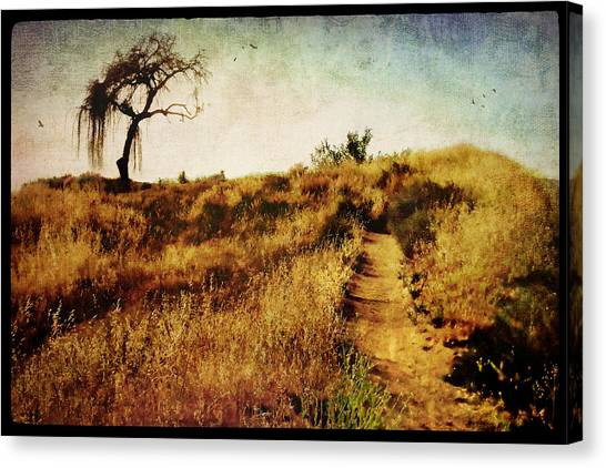 Epic Amazing Colors Landscape Digital Modern Still Life Trees Warm Natural Canvas Print - The Secret Pathway To Aspiration by Brett Pfister