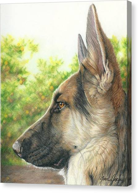 The Shepherd Watching Canvas Print