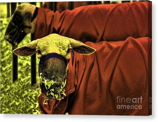 Silence Of The Lambs Canvas Print - The Silencer Of The Lambs by Gary Holmes