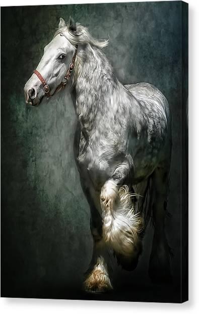 The Silver Gypsy Canvas Print
