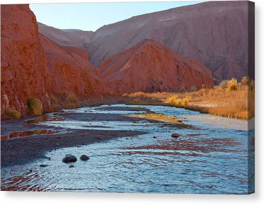 Atacama Desert Canvas Print - The Site Of The River Crossing From San by Mallorie Ostrowitz