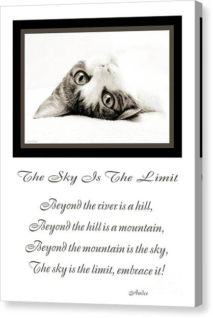 Andee Design Kitties Canvas Print - The Sky Is The Limit V 3 by Andee Design