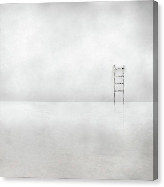 The Social Ladder Canvas Print by Gilbert Claes