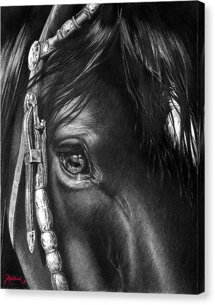 the Soul of a Horse Canvas Print