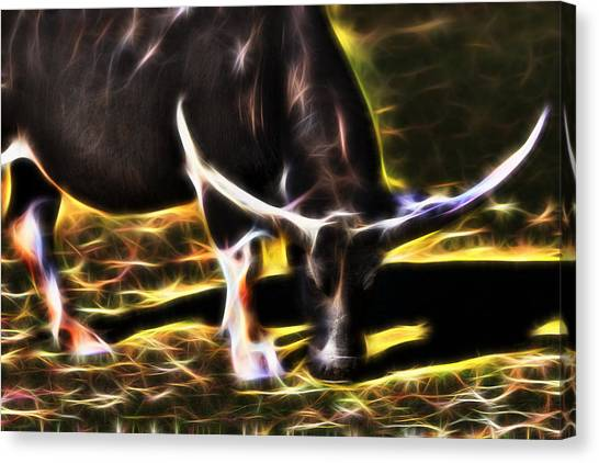 The Sparks Of Water Buffalo Canvas Print