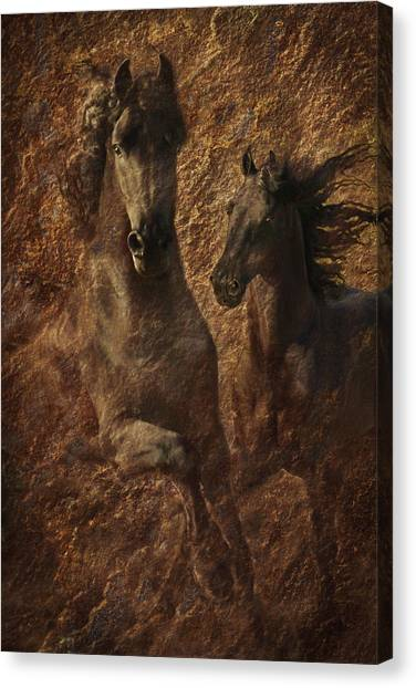 Canvas Print featuring the photograph The Spirit Of Black Sterling by Melinda Hughes-Berland