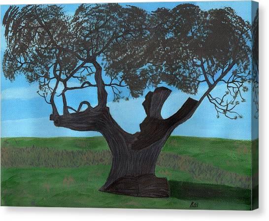 The Split Tree - Bradgate Park Canvas Print by Bav Patel