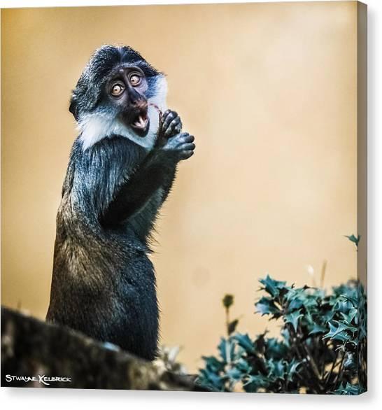 Canvas Print - The Starving Ape by Stwayne Keubrick