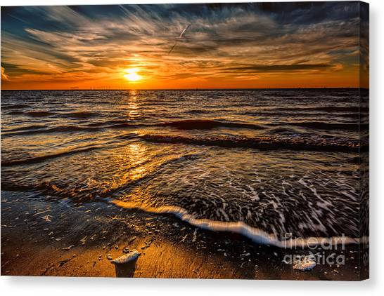 Wind Farms Canvas Print - The Sunset by Adrian Evans