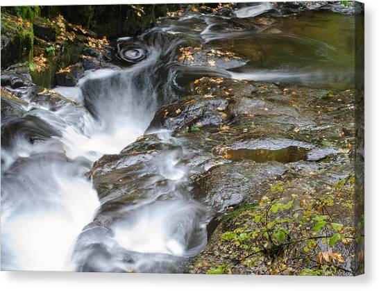 University Of Oregon Uo Canvas Print - The Swirling Stream by Margaret Pitcher