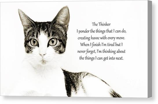 Andee Design Kittens Canvas Print - The Thinker by Andee Design