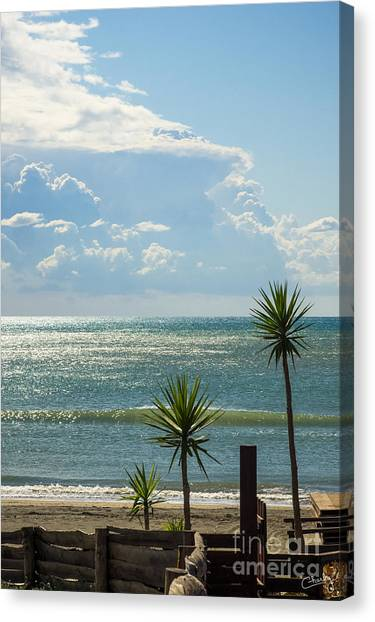 The Three Palms Canvas Print
