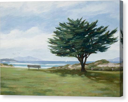 The Tree At Marina Park Canvas Print by Tina Obrien