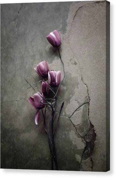 The Tulip Canvas Print by Kahar Lagaa