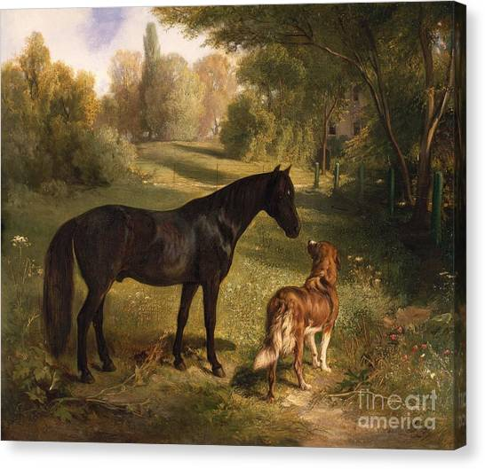 Breed Canvas Print - The Two Friends by Adam Benno