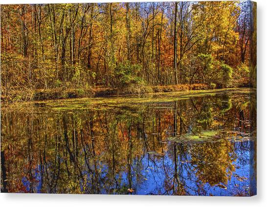 The Vibrancy Of Leaves Canvas Print by Kathi Isserman