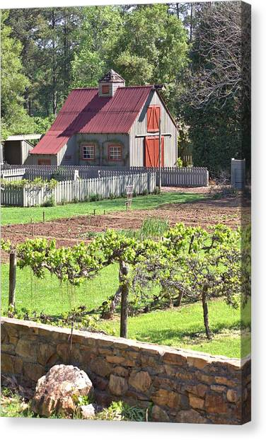 The Vineyard Barn Canvas Print