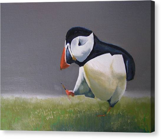 The Walking Puffin Canvas Print