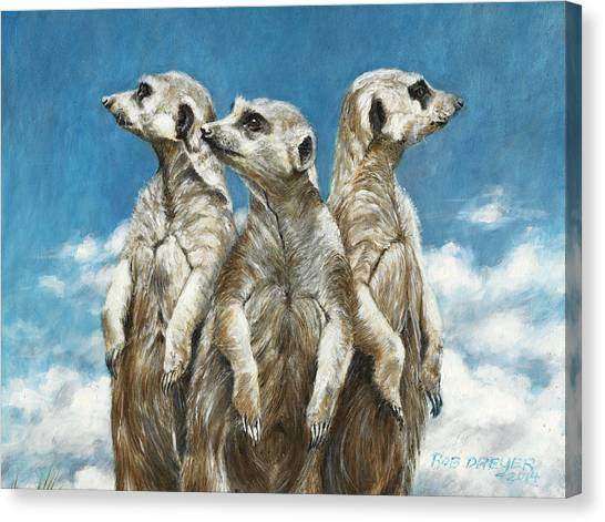 Meerkats Canvas Print - The Watchers by Dreyer Wildlife Print Collections