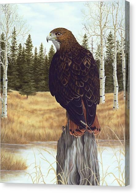 Birds Of Prey Canvas Print - The Watchful Eye by Rick Bainbridge