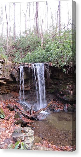 The Waterfall Canvas Print by Diane Mitchell