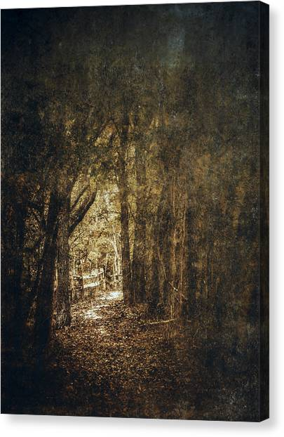 Blending Canvas Print - The Way Out by Scott Norris