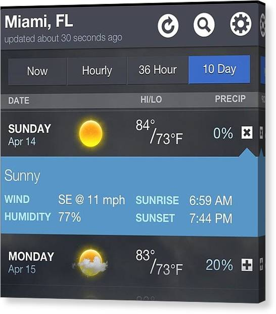Unicorns Canvas Print - The #weather For #miamipride #pride by Steven Griffin