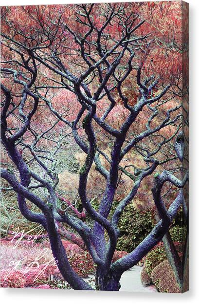 The Web Of Life Canvas Print by Barbara Bitner