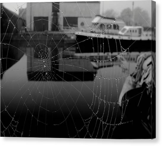The Web Canvas Print by Peter Skelton