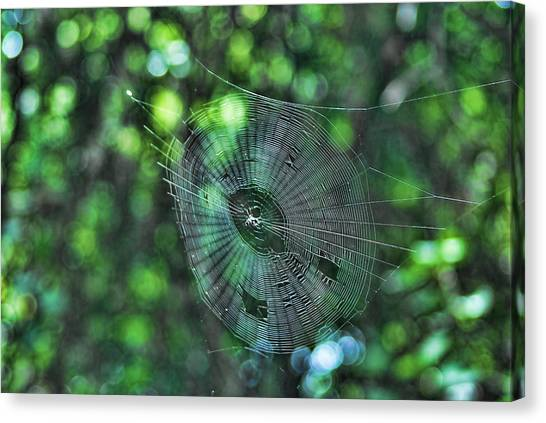 The Web Canvas Print