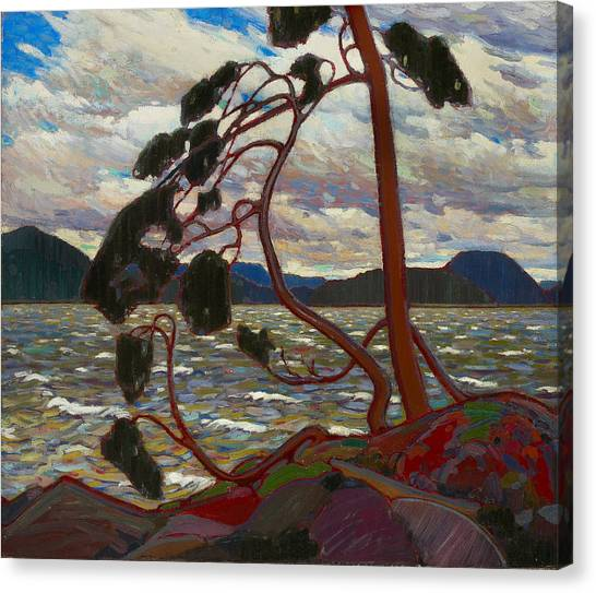 Canvas Print featuring the painting The West Wind by Tom Thomson