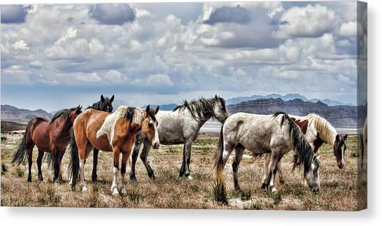 The Wild Band Canvas Print