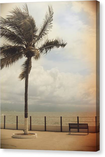 Puerto Canvas Print - The Wind In My Hair by Laurie Search
